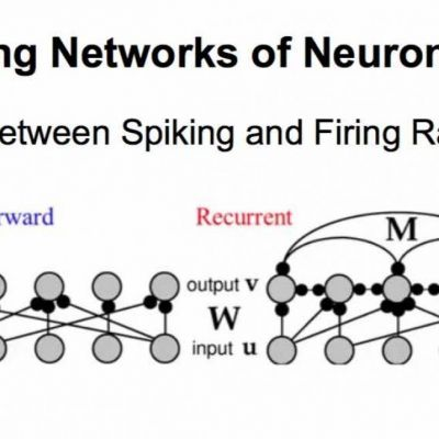 Modeling Networks of Neurons